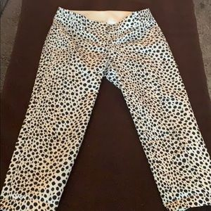 Carnegie/ crop animal print pant.